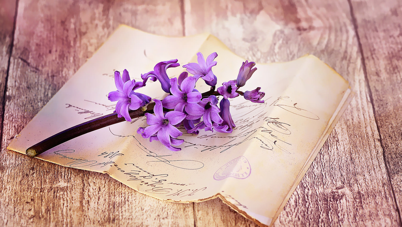 стихи и письма осенью