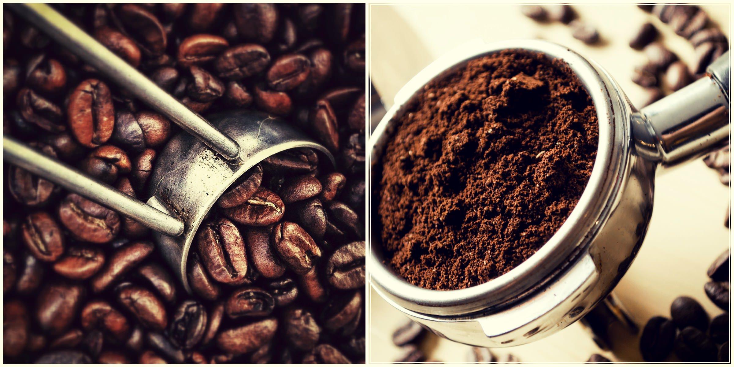 Кофе. Музей кофе. Кофейные зерна